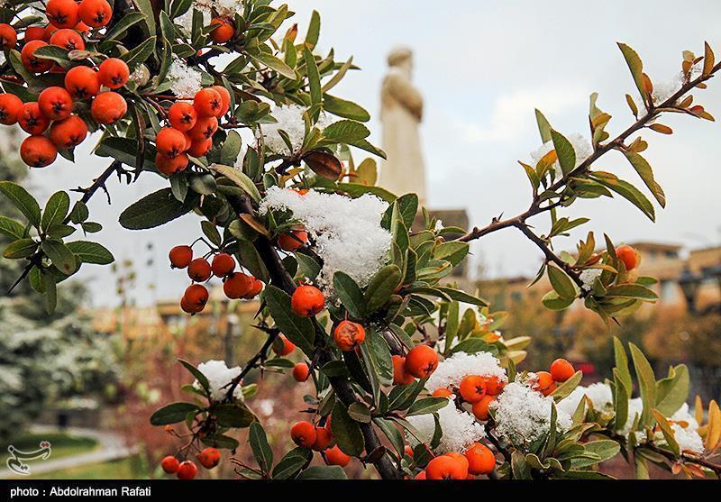 کاهش 7 درجه ای دما، آغاز بارش برف و باران در 10 استان