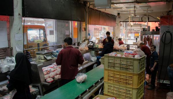 استانداری تهران: هیچ صفی برای خرید مرغ وجود ندارد